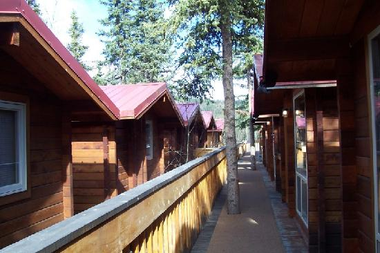 The Cabins at Denali Park Village : The Cabins as you navigate the pathways.