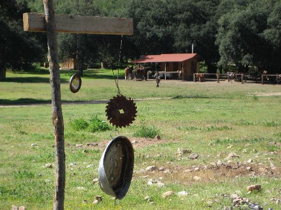 "Baja Rancho La Bellota: at the ""shooting range"""