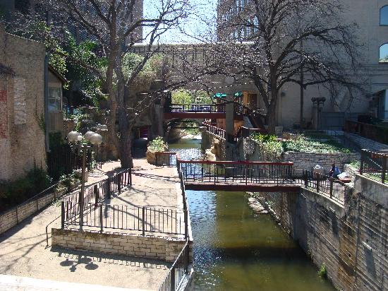 The Gardens Next To The Hotel Picture Of Hilton Garden Inn Austin Downtown Convention Center