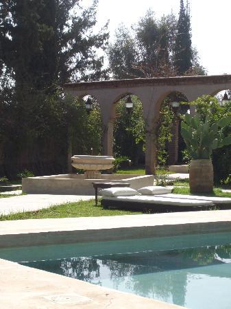 Riad Tammou : piscine jardin