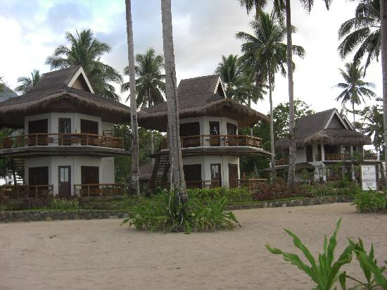 Daluyon Beach and Mountain Resort: Cottages overlooking the beach.