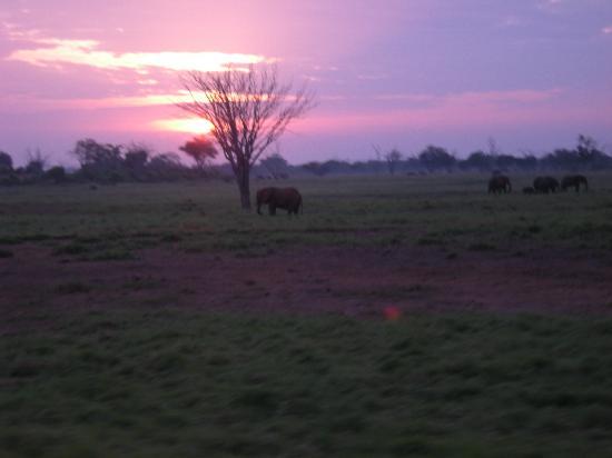 Scorpio Villas: il tramonto
