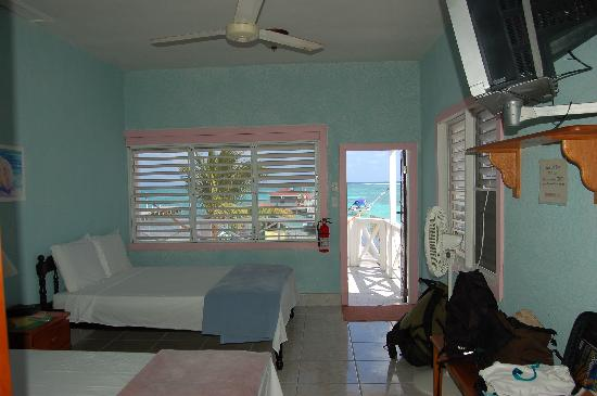 Conch Shell Inn: from the back wall