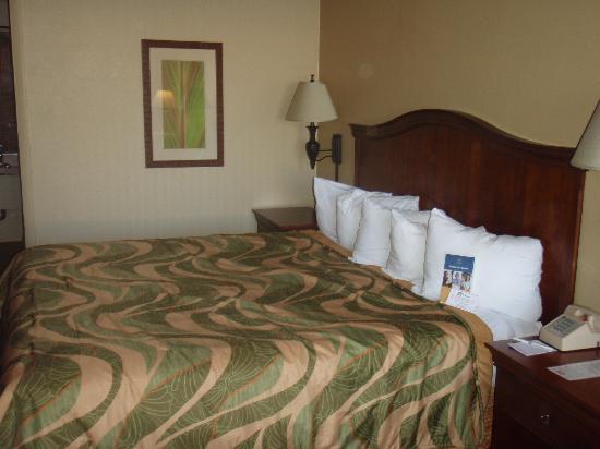 Best Western Downtown Stuart: Room 145