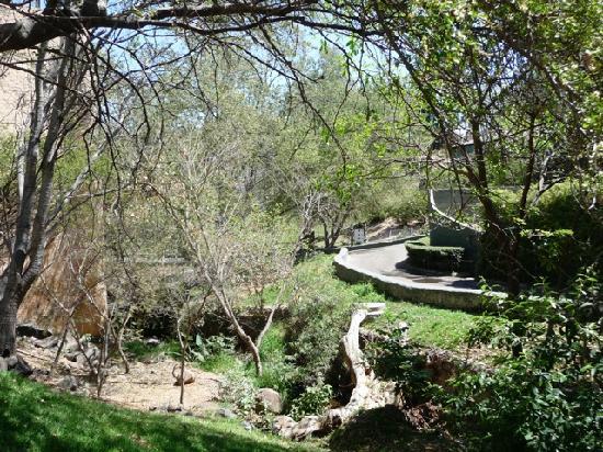Zoologico Guadalajara: A lot of shade at the zoo