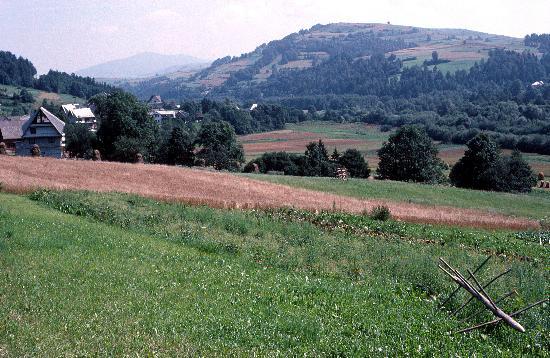 Nowy Targ, Polska: Countryside near Raba Wyzna