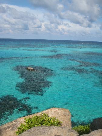 Sirius Hotel & Dive Center: blue ocean