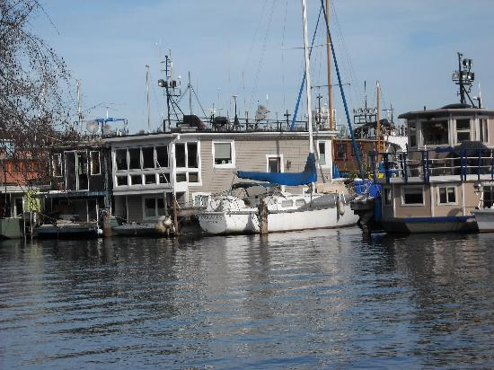 Burke-Gilman Trail: house boats along burke gillman trail