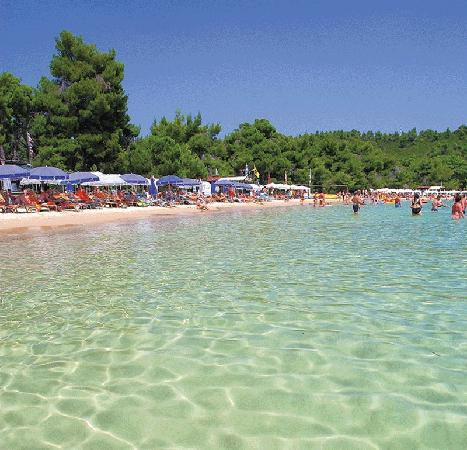 Eubea, Grecia: Koukounaries Beach - super !
