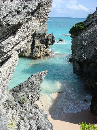 Bermuda: Jobson's Cove