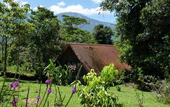 Colonia Virgen del Socorro, Costa Rica: The guest cabin and Albergue Socorro