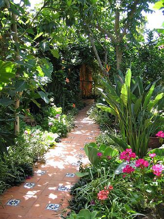 Casa Adobe B&B: Garden