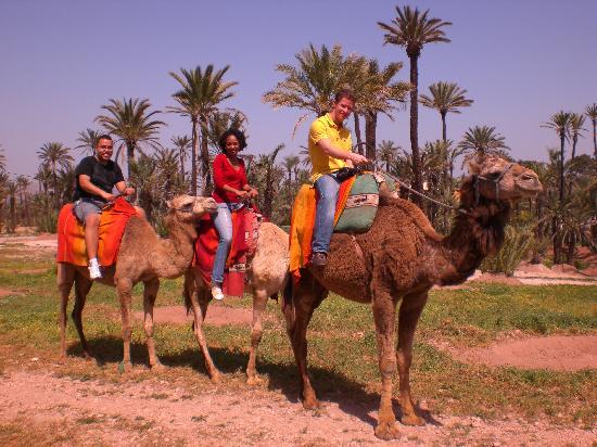 Riad Slawi: camel riding