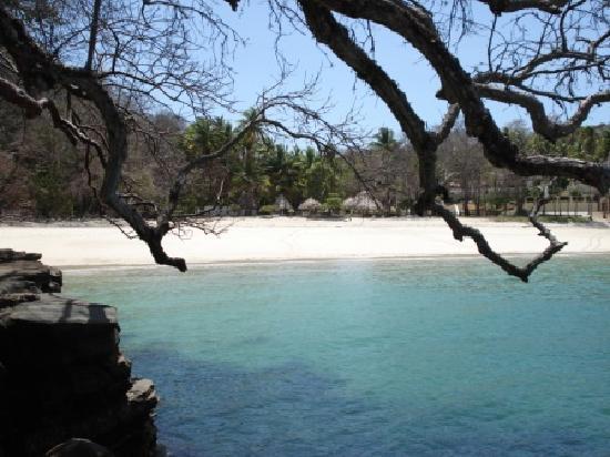 Contadora Island Inn: Playa Ejecutiva