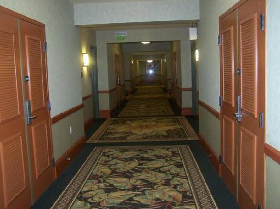 hallway where our room was picture of shades of green. Black Bedroom Furniture Sets. Home Design Ideas