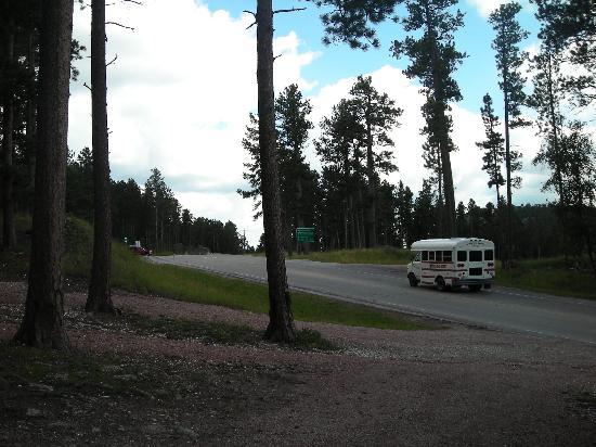 Sylvan Lake Lodge: Road outside Senator's Cabin