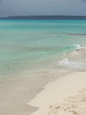 Playa de Ses Illetes: mitjiorn 2008