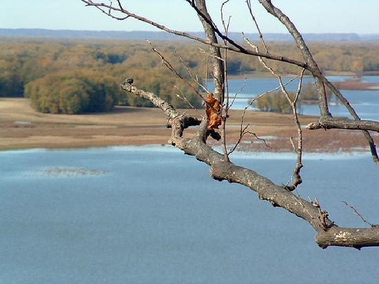 Mississippi Palisades State Park: A view from Lookout Point at Palisades State Park in Savanna, IL. (looking west)  Mid-Oct. 2003