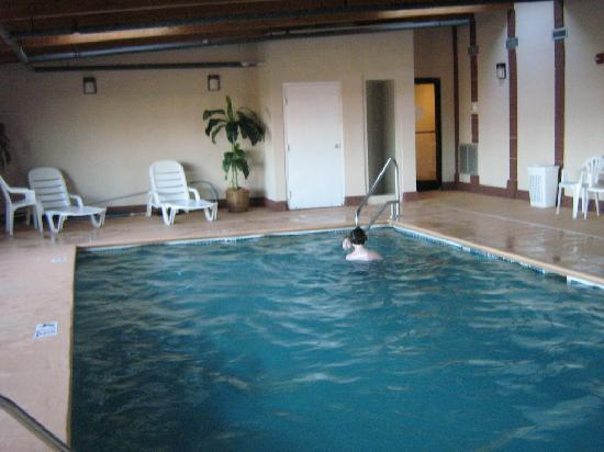 Super 8 Dickson: another angle of the indoor pool