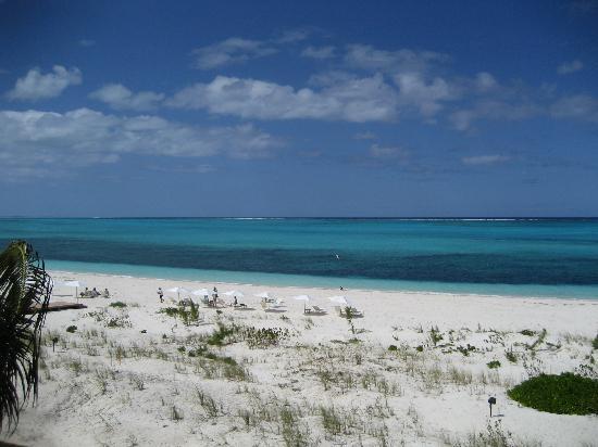Gansevoort Turks + Caicos : What color!!!!!