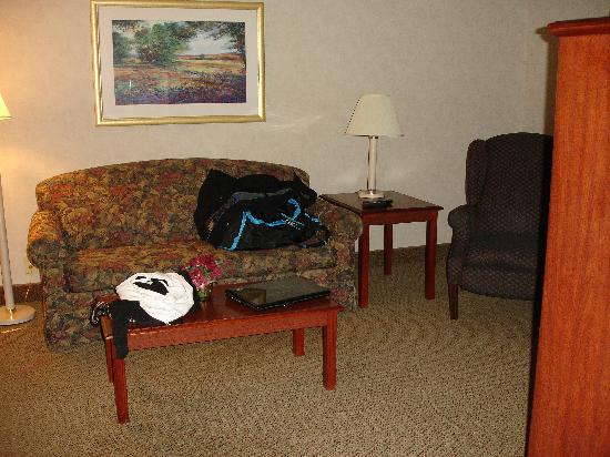 Hampton Inn & Suites Asheville-I-26: Sitting Area