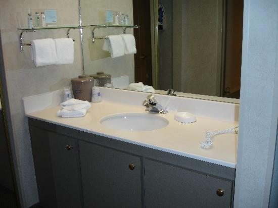 Hampton Inn & Suites Asheville-I-26: Vanity