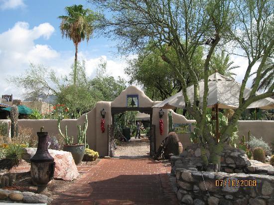 Hacienda Del Sol Guest Ranch Resort: gorgeous grounds