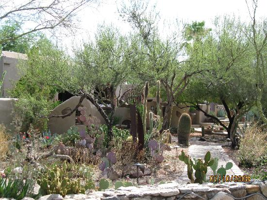 Hacienda Del Sol Guest Ranch Resort: More gardens