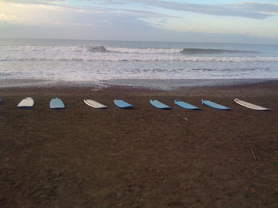 Vista Guapa Surf Camp: Surfing at dawn