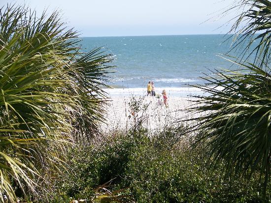 Boardwalk Picture Of Disney S Hilton Head Island Resort