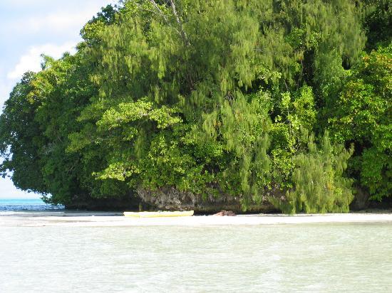 Carp Island Resort: Carp Island