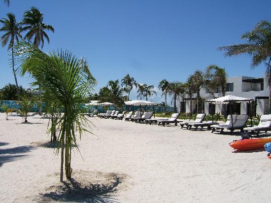 Las Terrazas Resort: The crowd at the beach