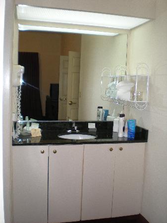 Homewood Suites by Hilton Nashville Brentwood : Bathroom vanity