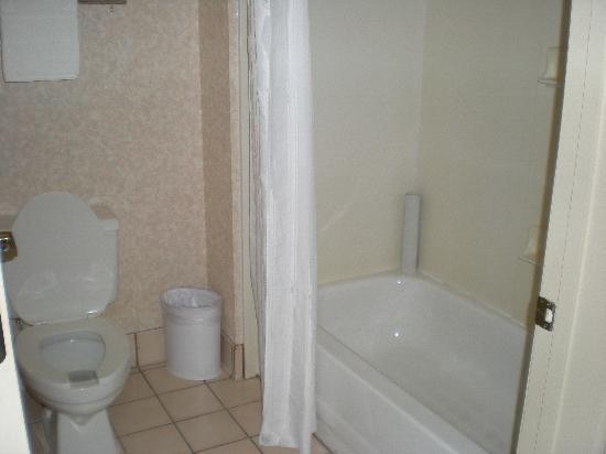 Homewood Suites by Hilton Nashville Brentwood: Bathroom