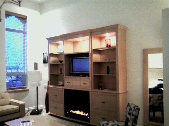 Retro Suites Hotel: Shelving unit with fireplace