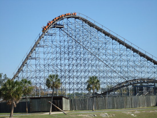 Wild Adventures Theme Park : The Cheetah roller coaster
