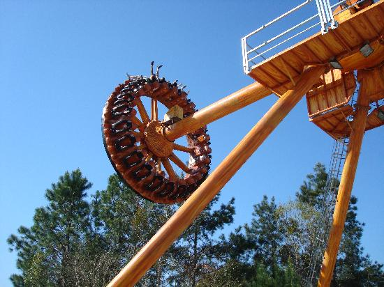 Wild Adventures Theme Park: The Rattler ride