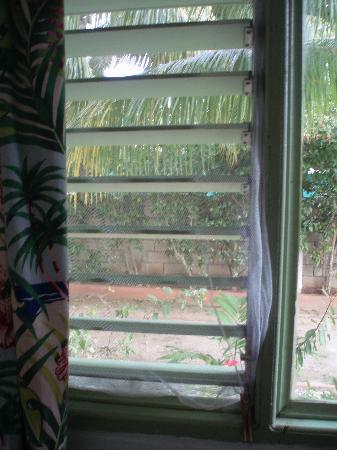 Hidden Paradise Resort Hotel: Mosquito netting we covered the windows with.