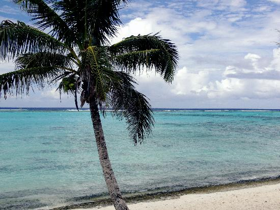 Aremango Guesthouse: beach at Fruits of Rarotonga