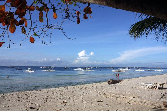 Alona Tropical Beach Resort: the beach at 7 in the morning