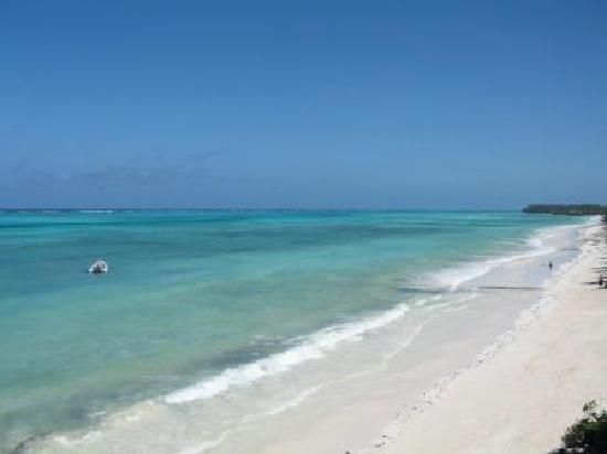 Pingwe Beach Zanzibar Picture Of Pingwe Zanzibar