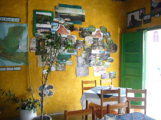 Cafe Arqueologico Yaxha: from inside- literally wallpapered