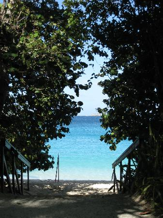 Path onto beach at Trunk Bay, St John, USVI