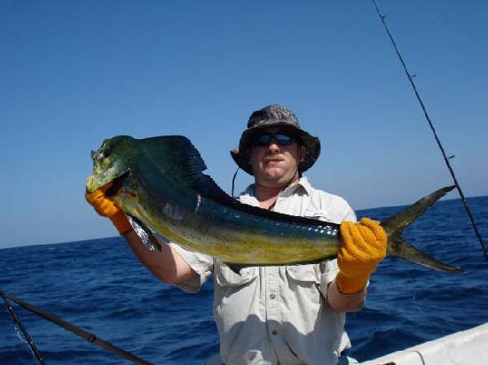 Fish El Salvador: Bill