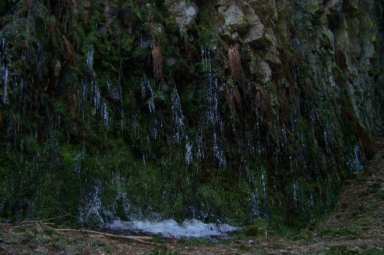 Hotel Restaurant Ochsenwirtshof: Am Burgbach Wasserfall