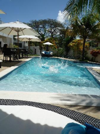Casa Veintiuno : swimming pool