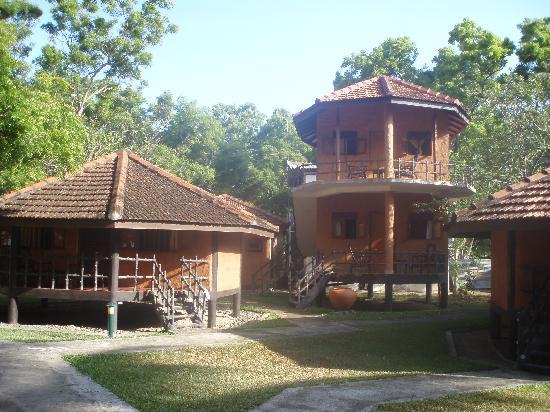 Mawella Beach Resort: some bungalows