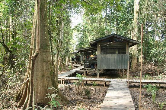 Boots Picture Of Uncle Tan Wildlife Camp Sandakan Division Tripadvisor
