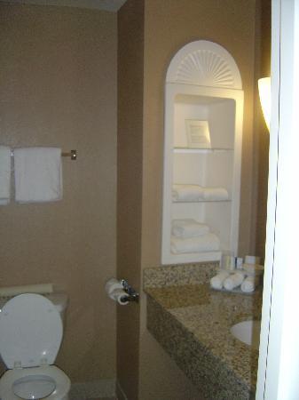 Holiday Inn Express Hotel & Suites Fresno (River Park) Hwy 41 : Bathroom