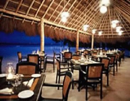Suave Vida Hotel and Suites: cocoloco